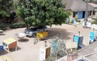 Renewable Energy - the solution to energy supply challenges in The Gambia